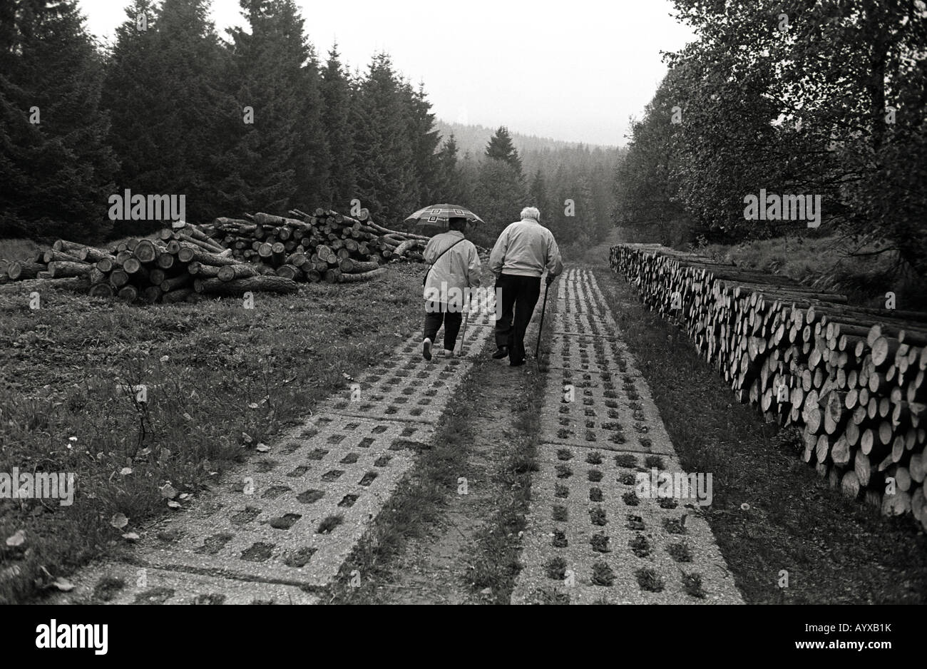 GERMANY DDR BORDER TANK TRACKS WALKING EXERCISE FOREST RELAXATION HARZ MOUNTAINS - Stock Image