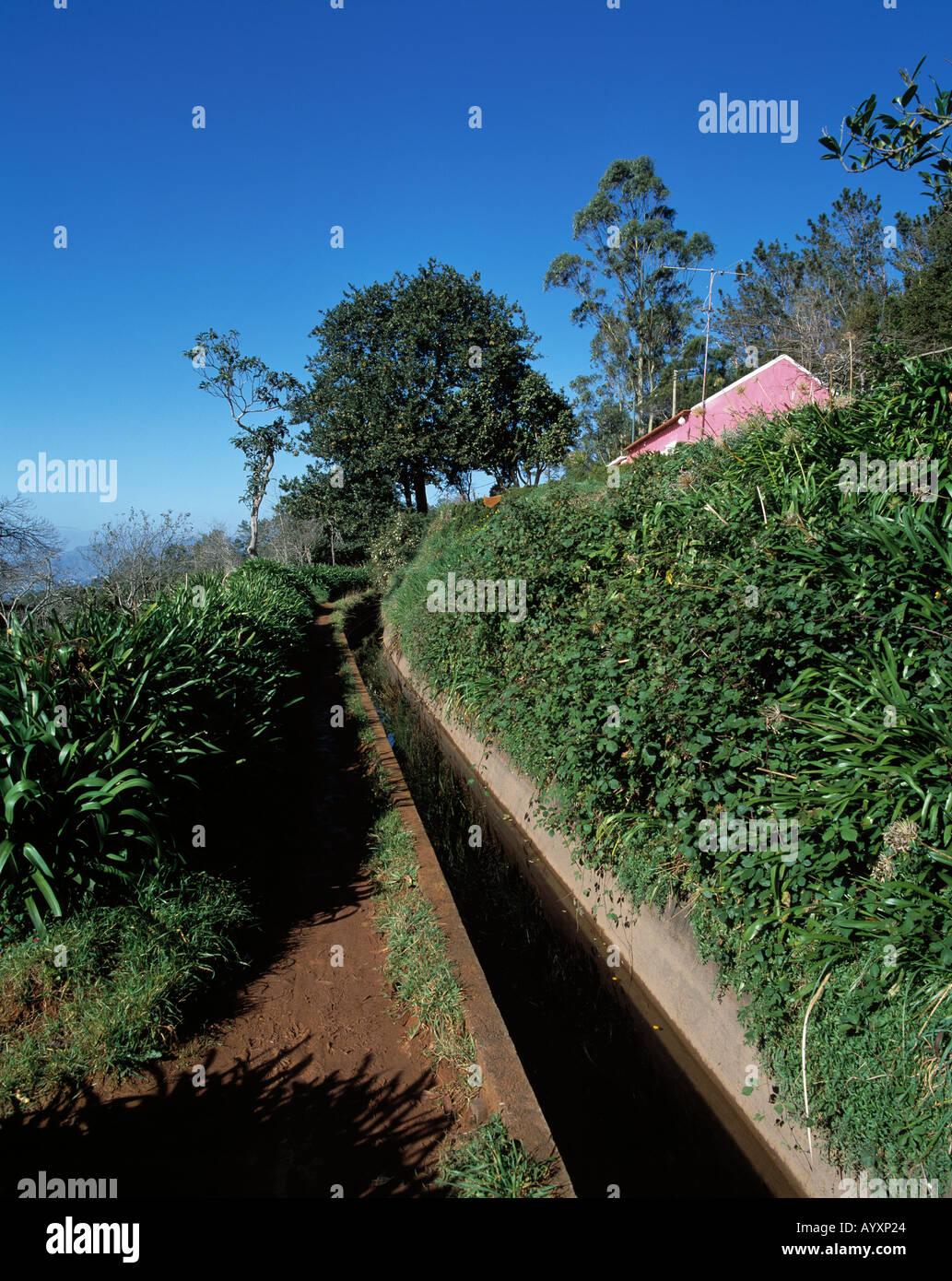 Levada, typischer Bewaesserungskanal fuer die Landwirtschaft auf Madeira Stock Photo