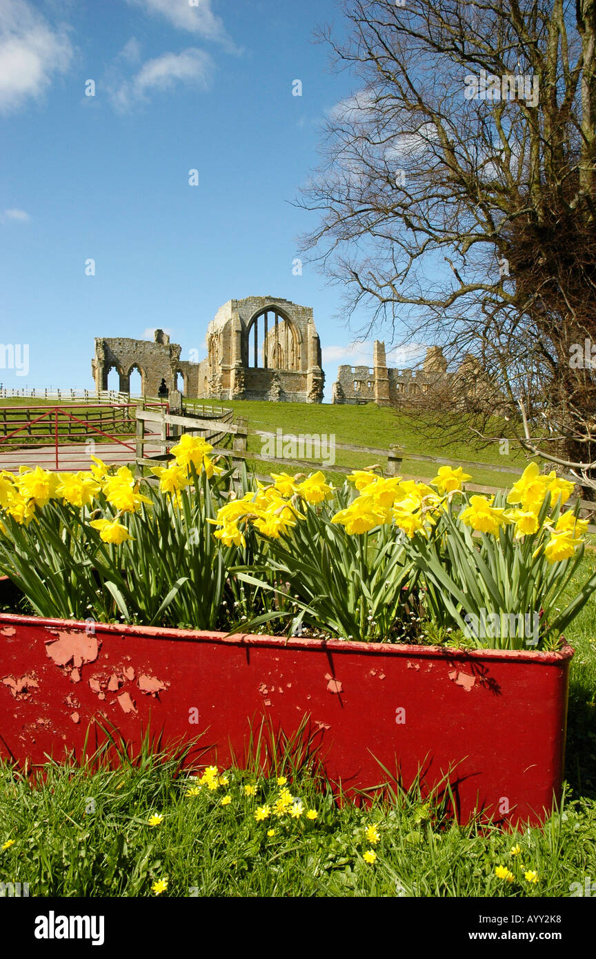 View of Egglestone Abbey, Teesdale, near Barnard Castle, North Yorkshire - Stock Image