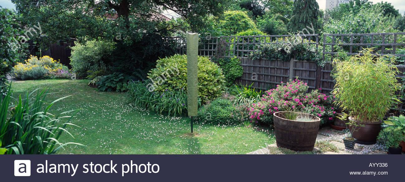 Mature suburban garden with shrubs, panorama format, London, England ...