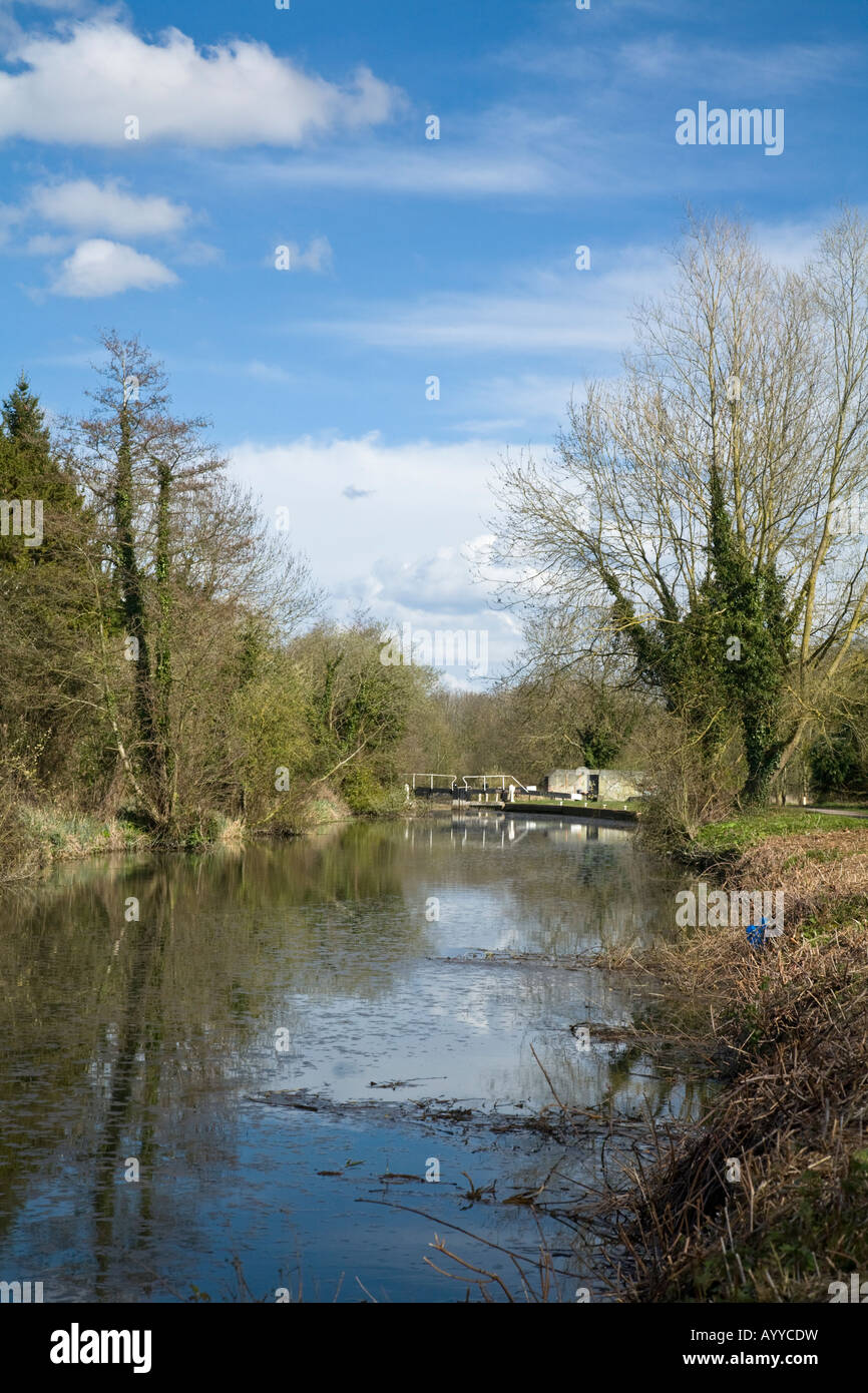Picturesque Kennet and Avon Canal looking towards Garston lock Theale Reading Berkshire - Stock Image