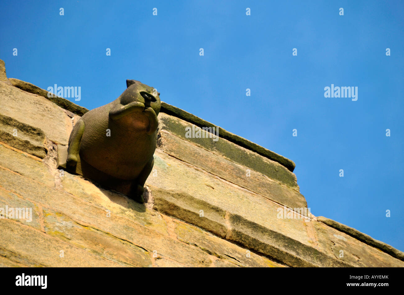 Stone rat gargoyle on Eyam Church  Peak District Derbyshire UK - Stock Image