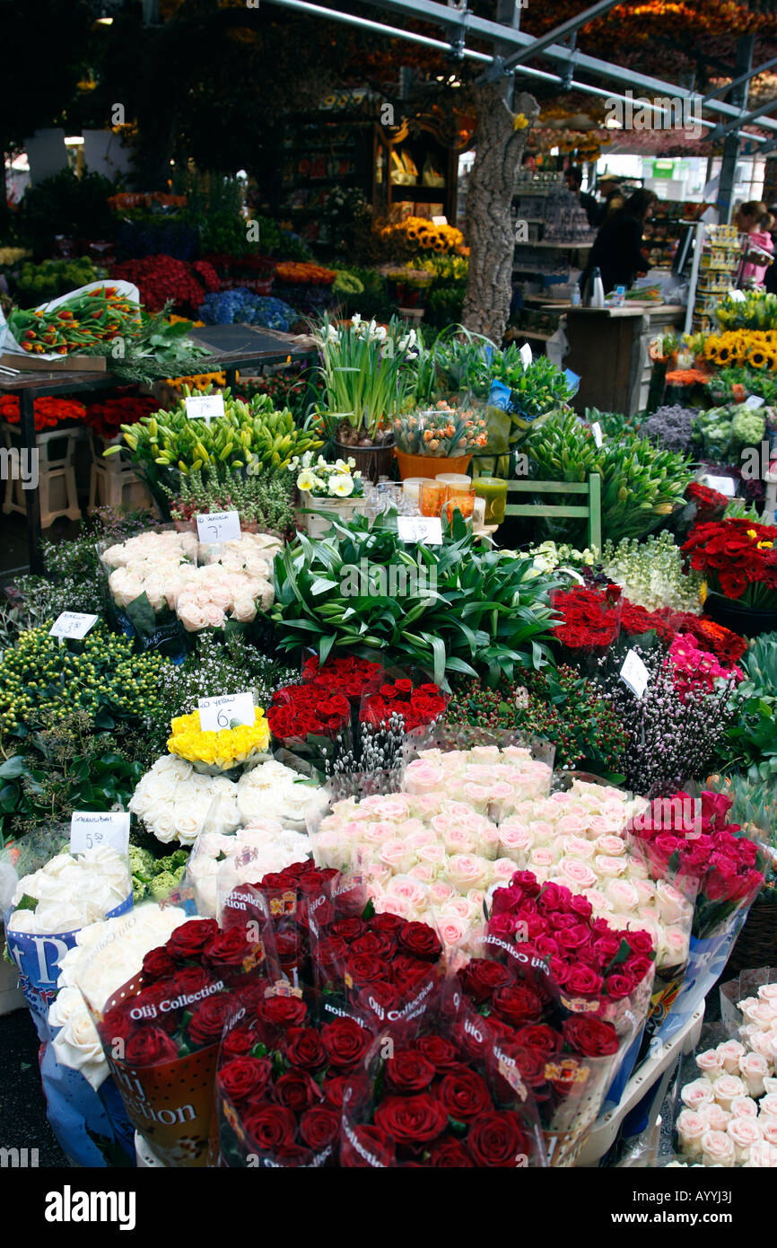 flowers for sale in the bloemenmarkt last of the citys floating markets singel amsterdam netherlands north holland Stock Photo