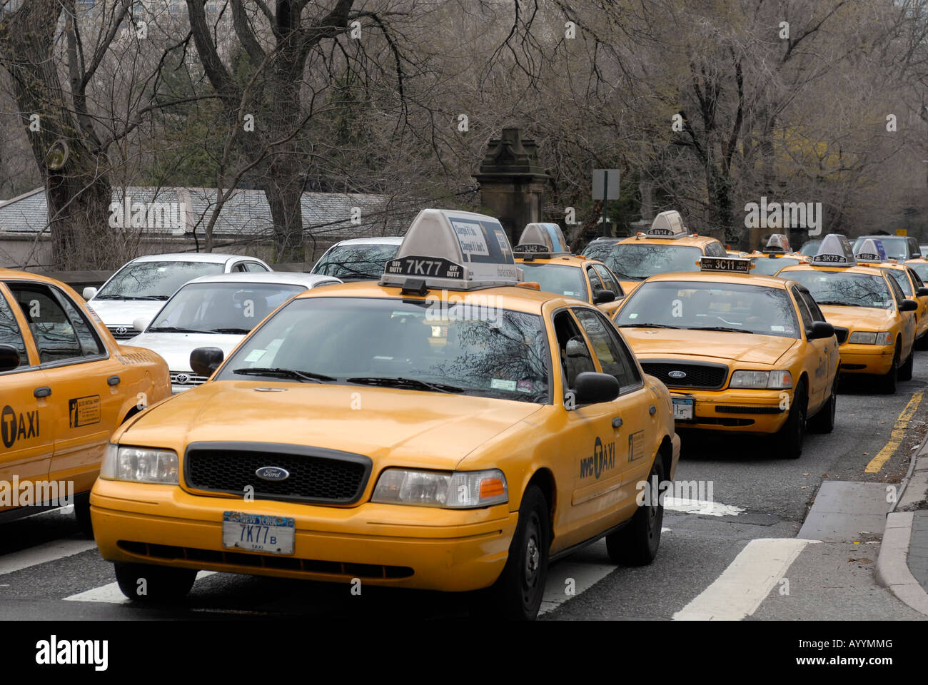 Taxicabs and other vehicles leave a Central Park transverse and cross Fifth Avenue Stock Photo