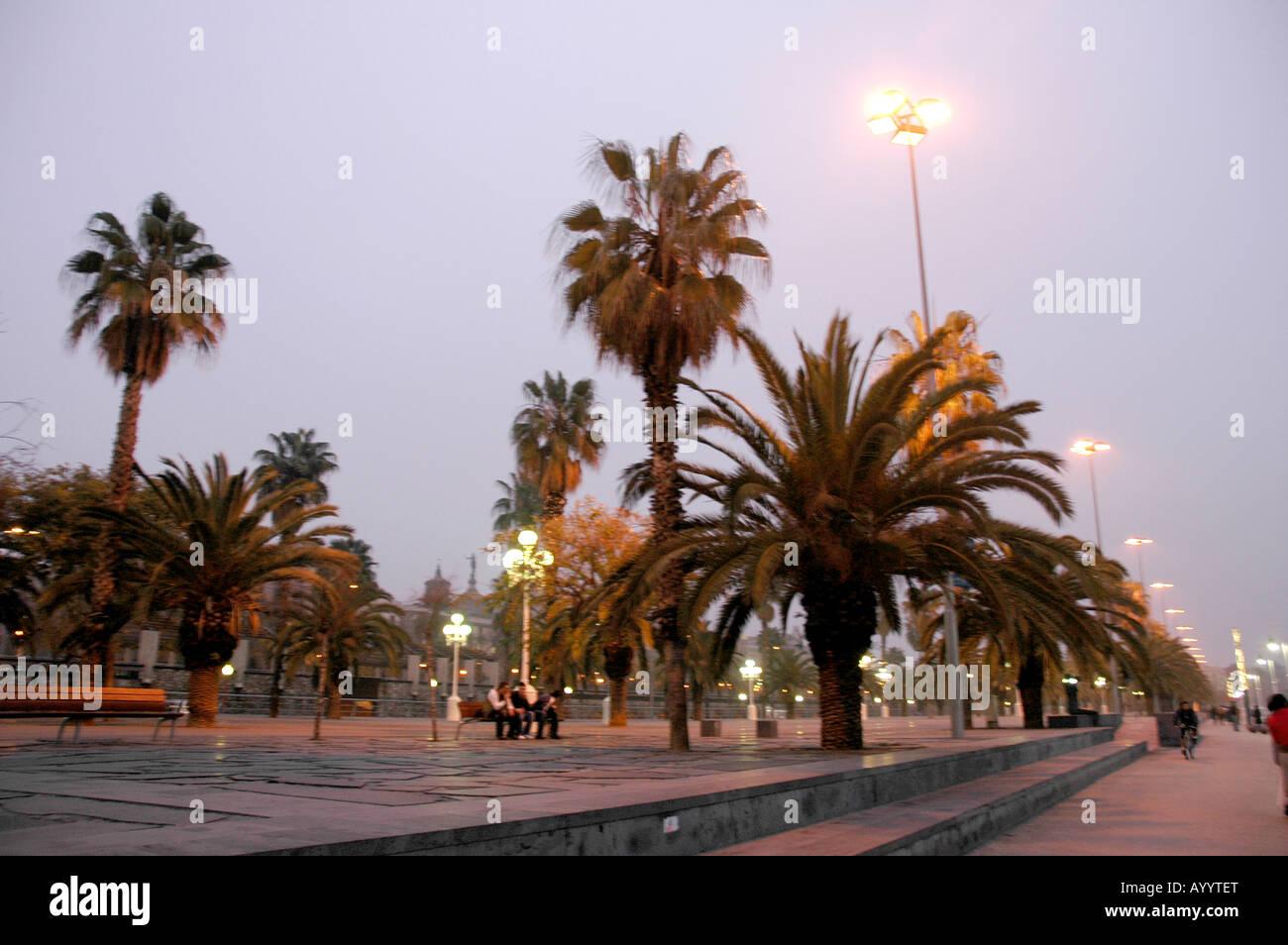 Barcelona in the evenings Abends tungsten light Kunstlicht urban town city Stadt city town urban port Hafen blurred - Stock Image