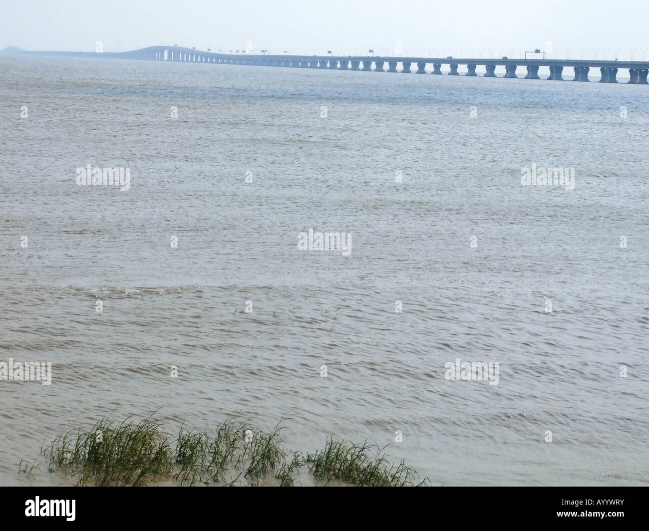 View of Donghai Bridge as seen from Lingang New City near Shanghai China Stock Photo