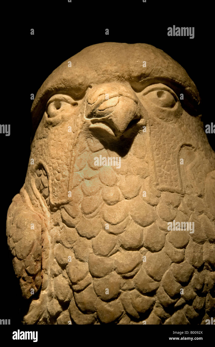 Predicting owl 2nd 3rd century AD - Stock Image