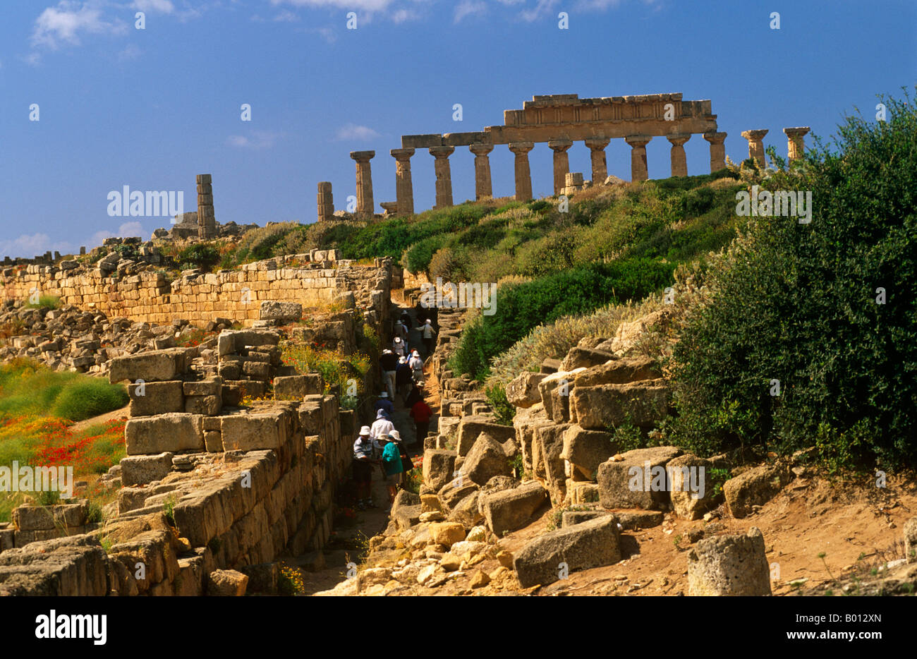 Italy, Sicily, Trapani. Selinunte is an abandoned ancient Greek city, with ruins of an acropolis and numerous temples. - Stock Image