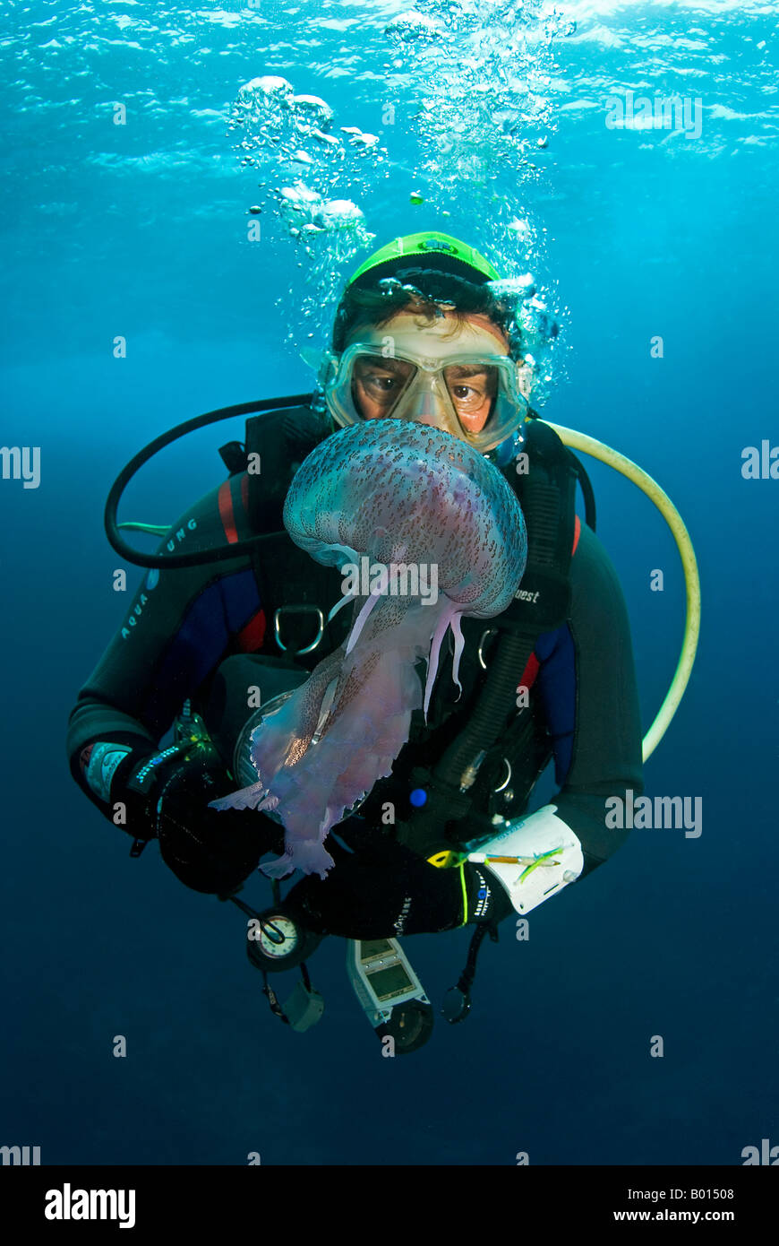 Diver and Jellyfish Stock Photo