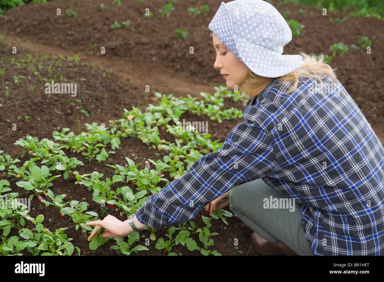 Young woman works in a garden. - Stock Image