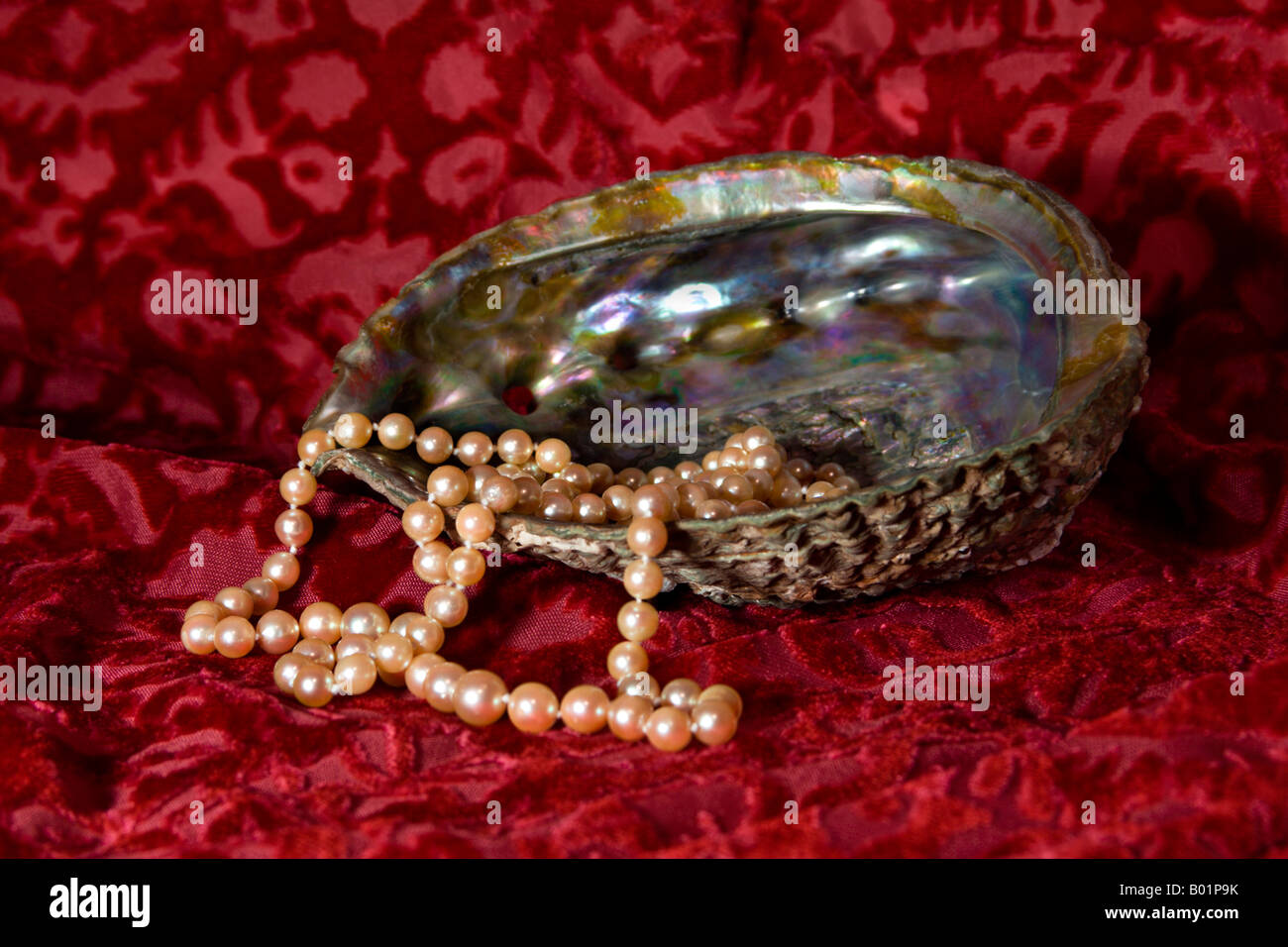 Pearls in a mother-of-pearl shell. - Stock Image