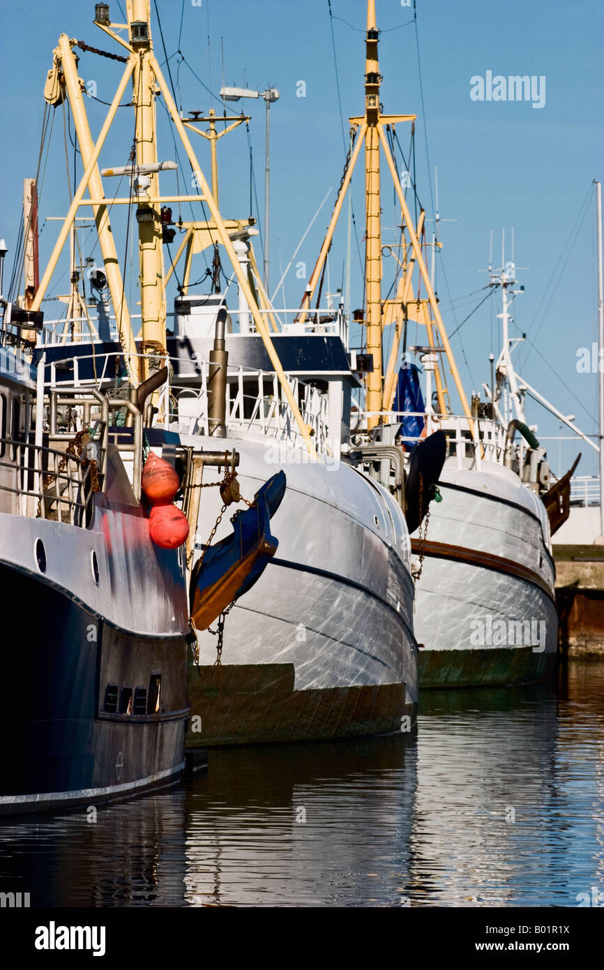 Fishing fleet in a harbour Stock Photo