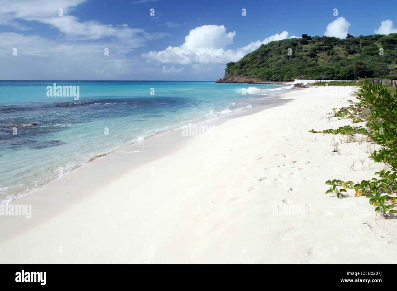 Darkwood Beach, Antigua Caribbean Stock Photo