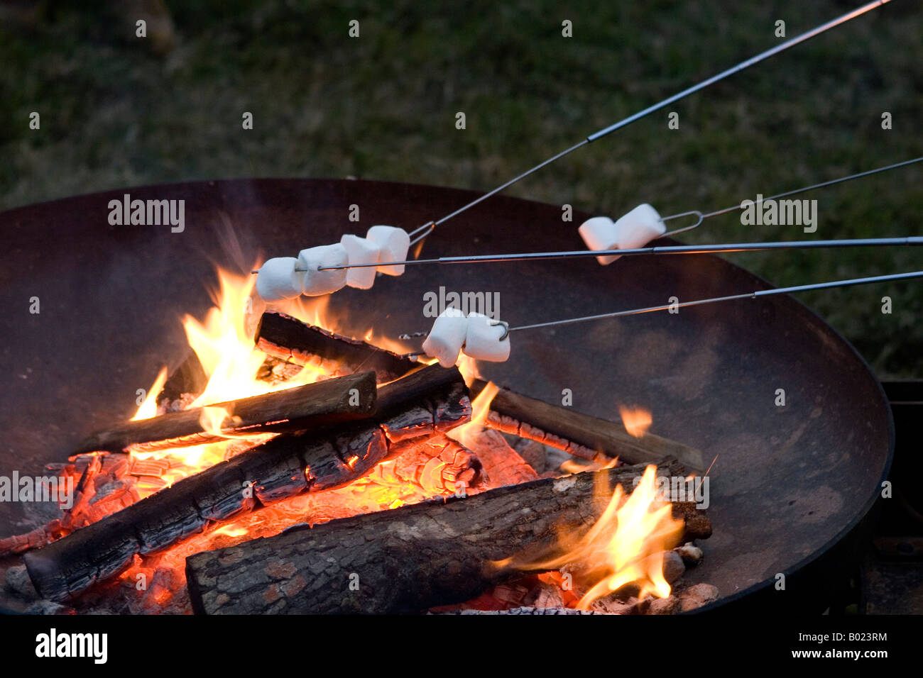 Roasting Marshmallows On Skewers Over The Flame Of A Wood Burning Campfire