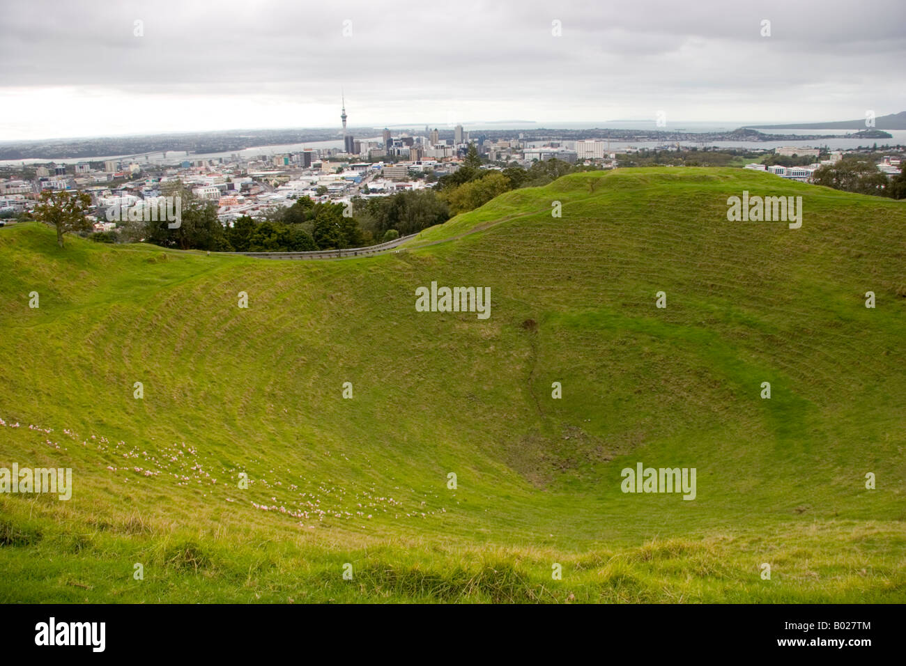 Auckland city view from Mt Eden volcanic crater New Zealand - Stock Image