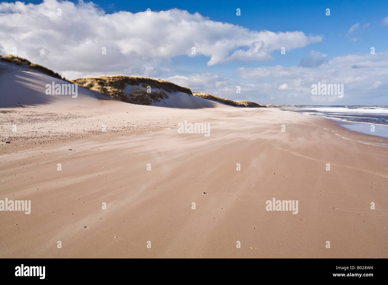 Sand blown across the dunes of Druridge Bay on the Northumbrian coast Northumberland, England - Stock Image