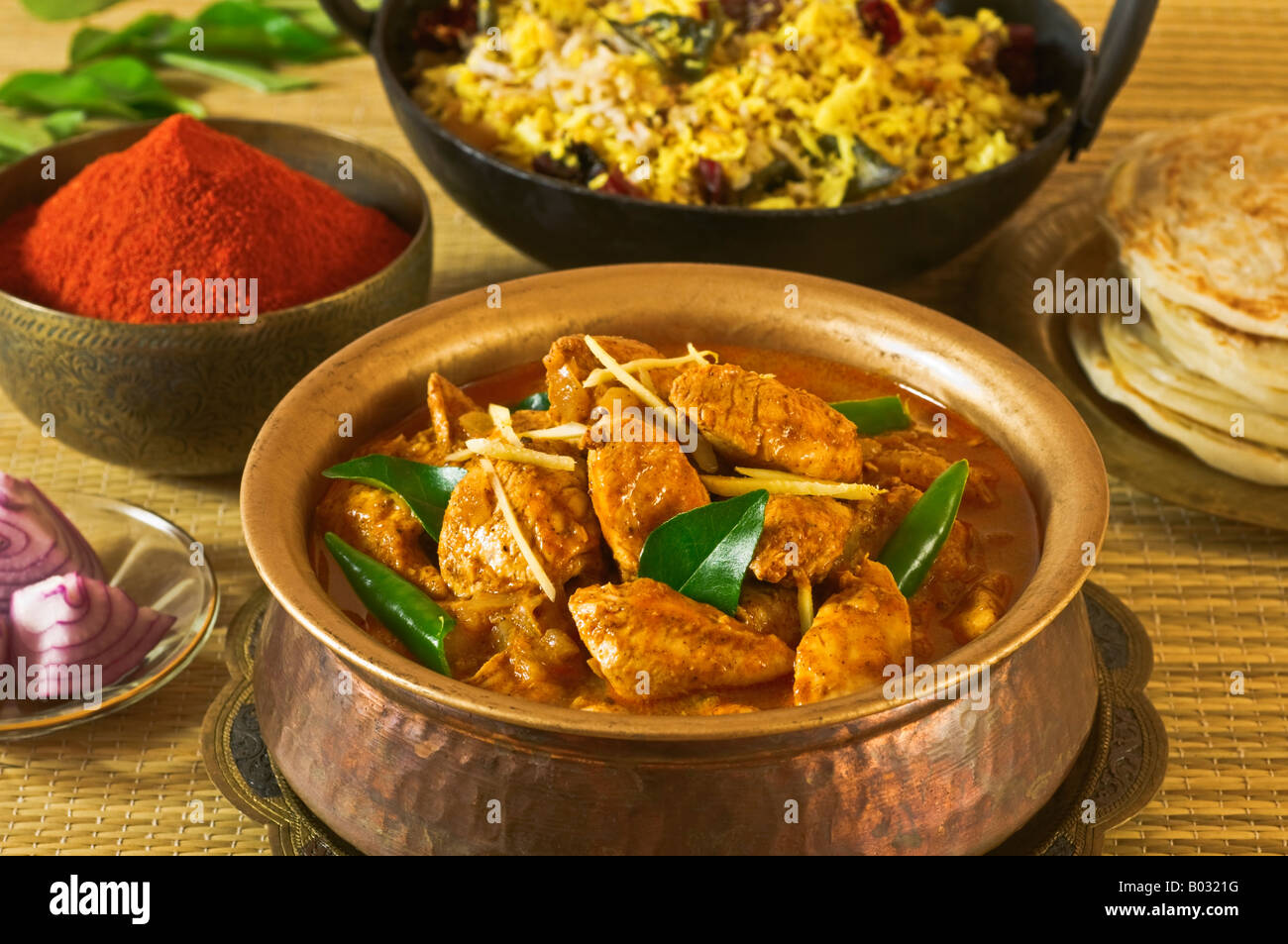 Chicken vindaloo curry india food stock photo 17277836 alamy chicken vindaloo curry india food forumfinder Images