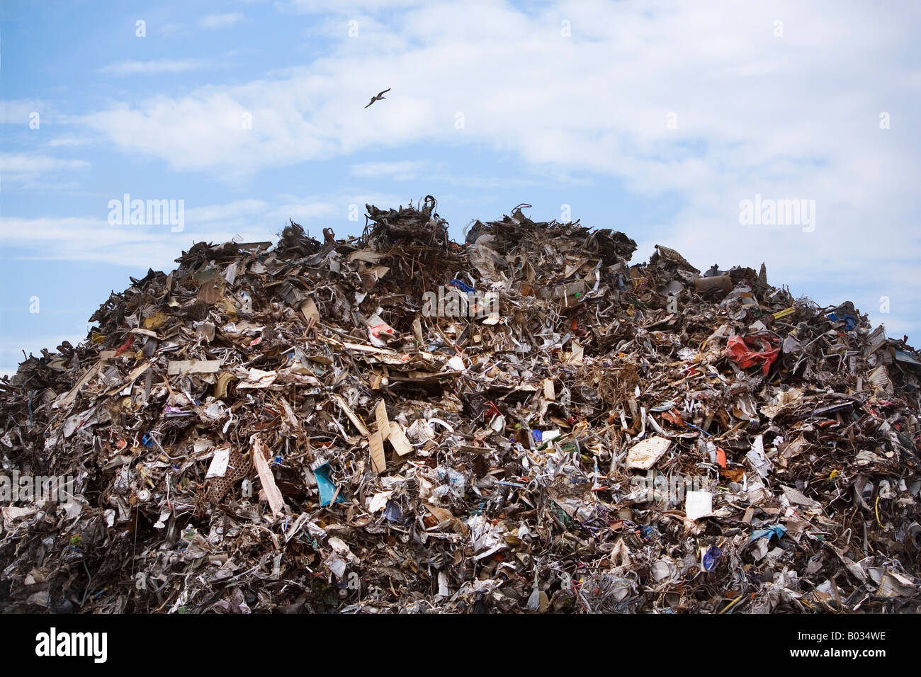 A seagull flies over a mountain of scrap. - Stock Image