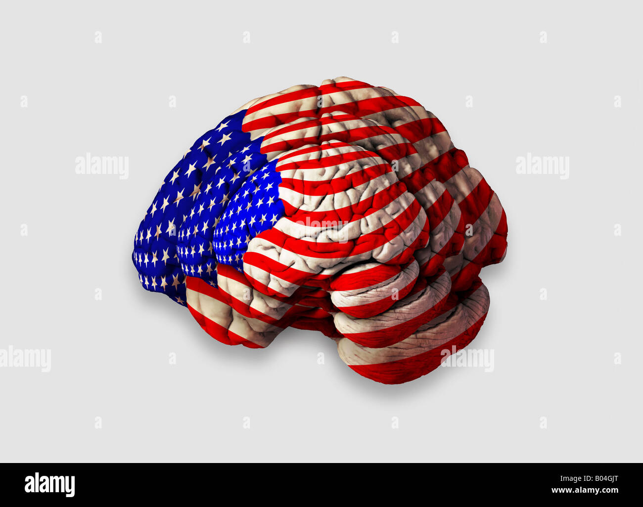 Cut Out Brain American America USA Flag Jasper Johns art style red white and blue stars and stripes nationality Stock Photo