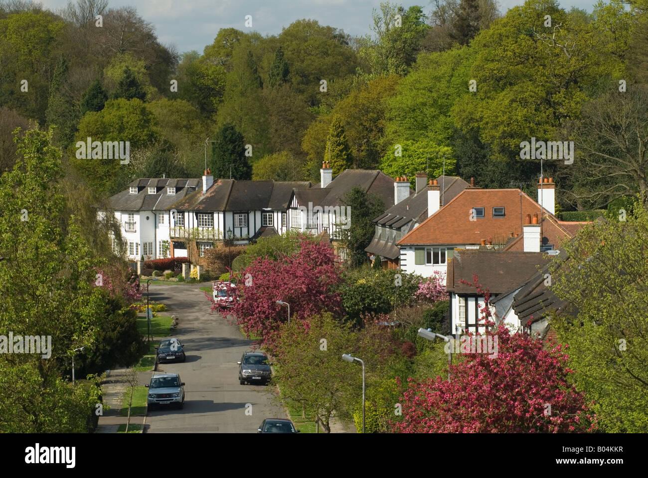 'Wimbledon Village' large detached [family house] UK. Backing onto 'Wimbledon Common' South West - Stock Image