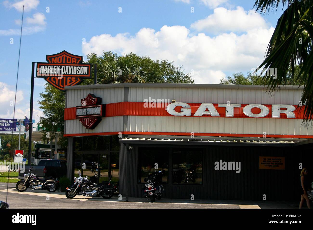 Gator Harley Davidson in Gainesville Florida USA Stock Photo ...