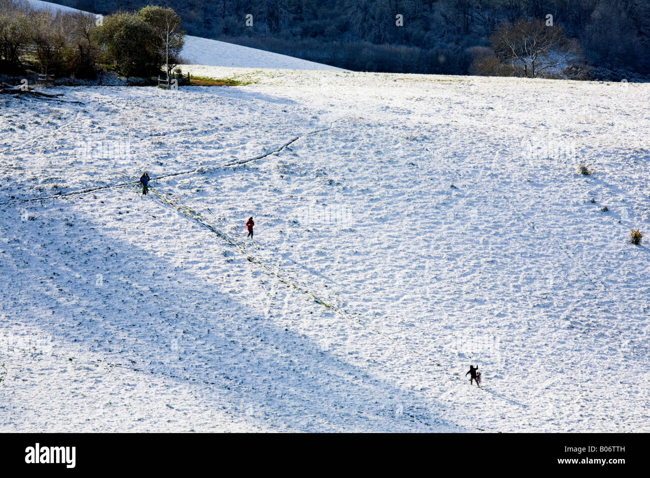 Playing in the snow near Ham Hill country park in South Somerset - Stock Image