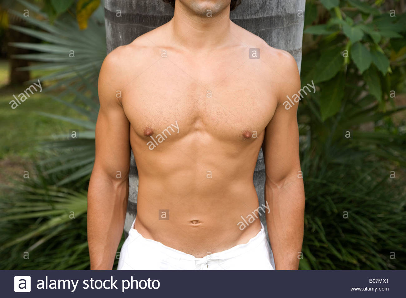 Close Up Shot Of A Muscular Mans Chest And Arms Stock Photo