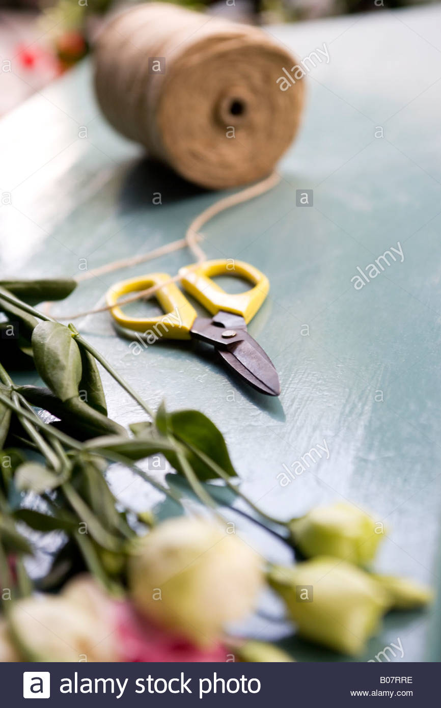 Bunch of roses, scissors and twine in a florist's shop - Stock Image