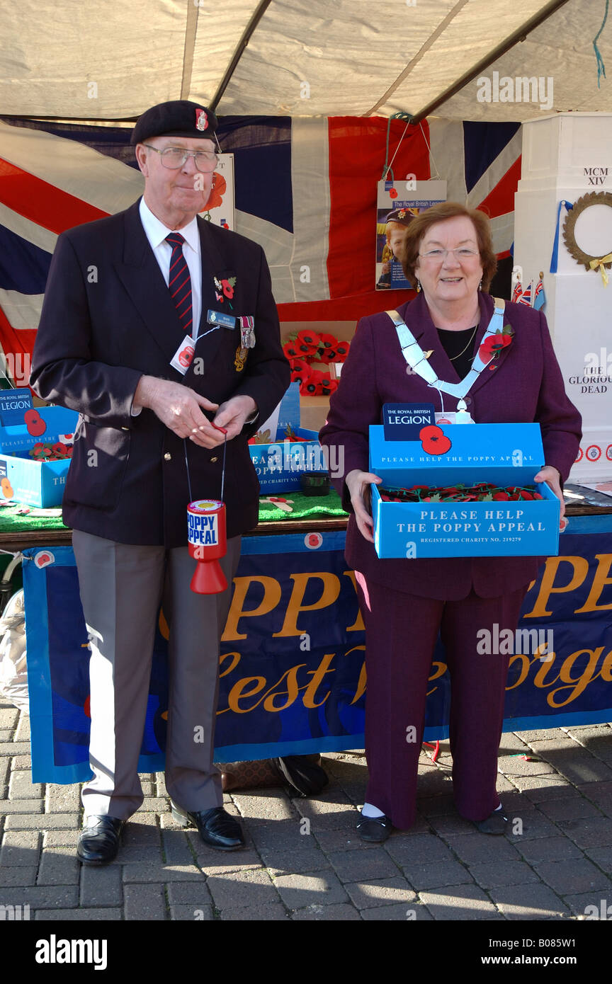 Poppy Appeal, Melton Mowbray, Leicestershire, England, UK - Stock Image