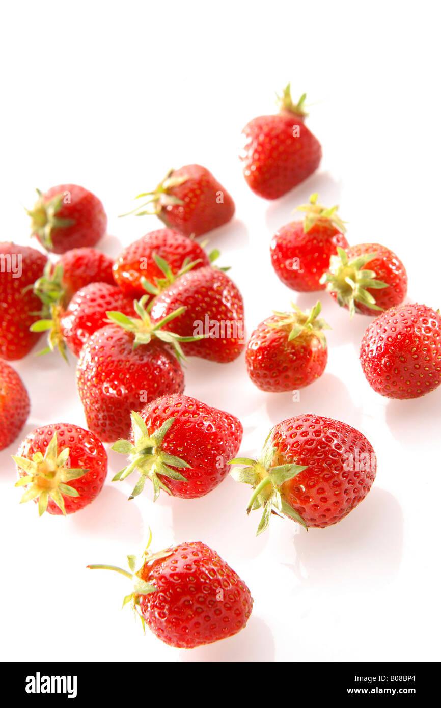 Einzelne Erdbeere, Strawberry - Stock Image