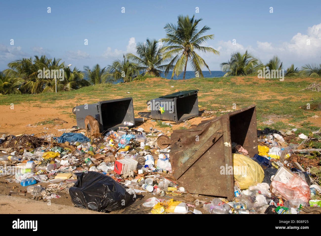 Pollution, litter, illegal garbage dumping, Isla Margarita, Margarita Island, Caribbean, Venezuela, South America - Stock Image