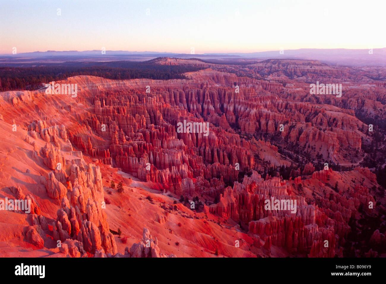 Amphitheater, Bryce Canyon National Park, Utah, USA - Stock Image