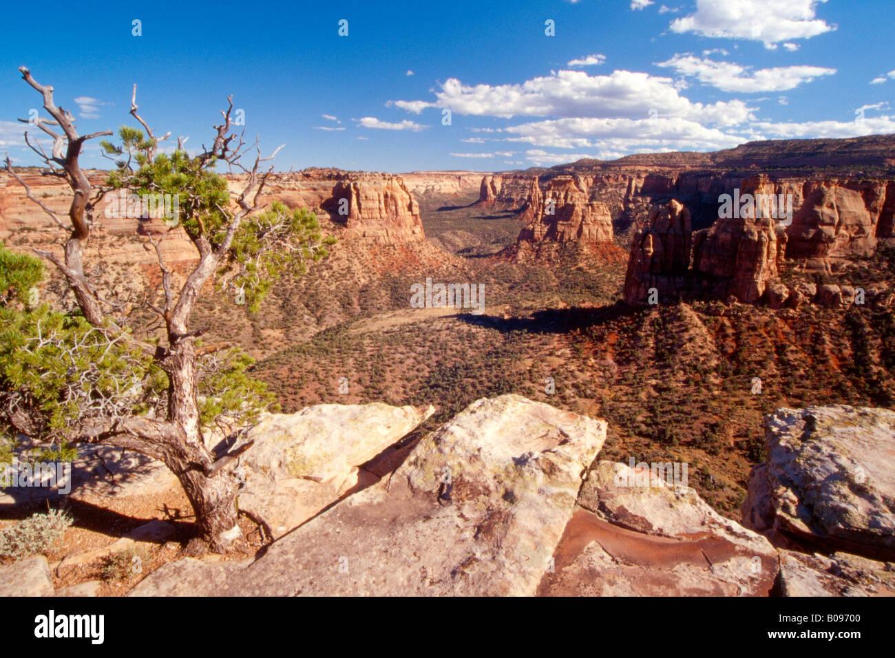Colorado National Monument, Colorado, USA - Stock Image
