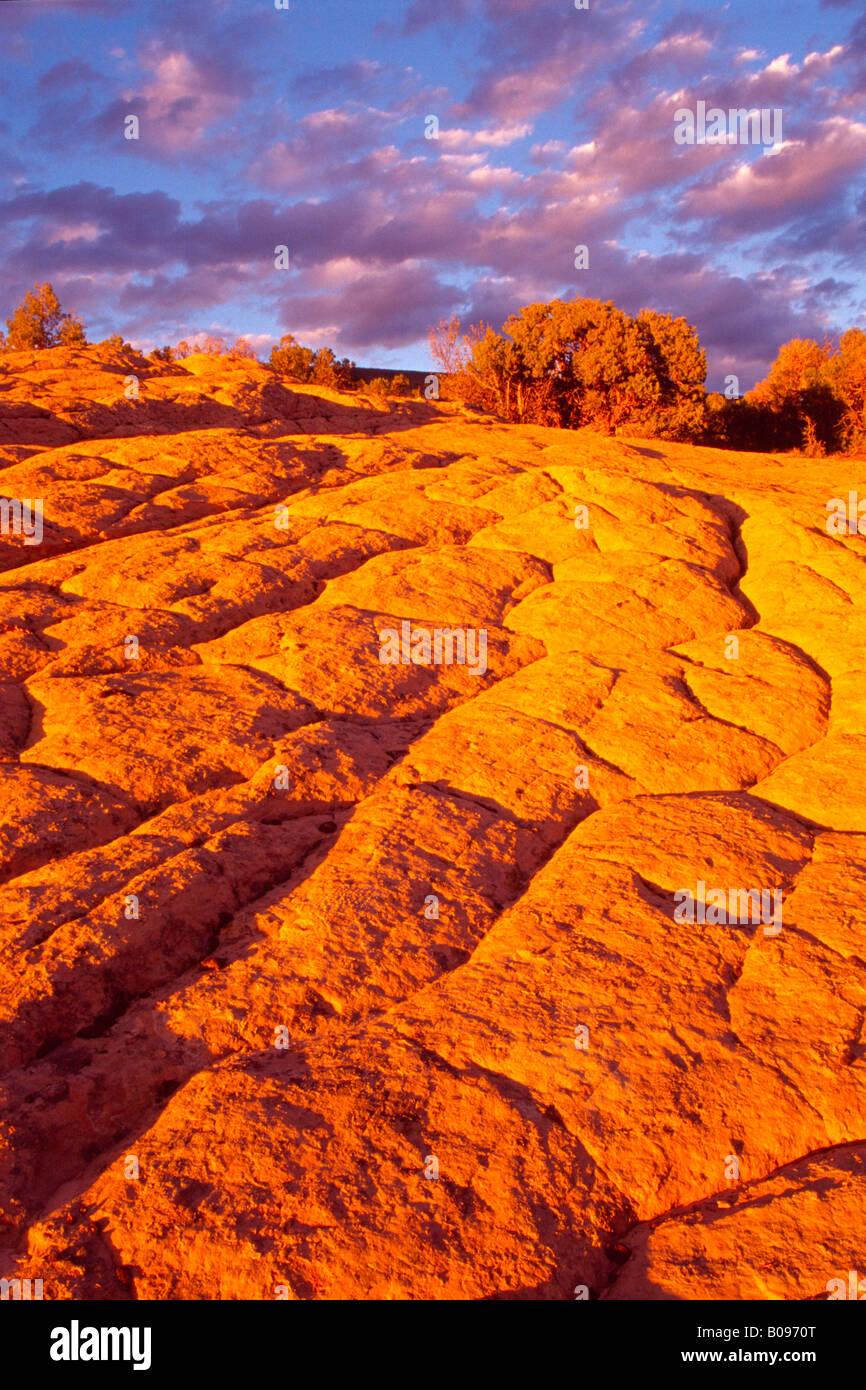 Glowing red rocks at Dinosaur National Monument, Utah, USA - Stock Image