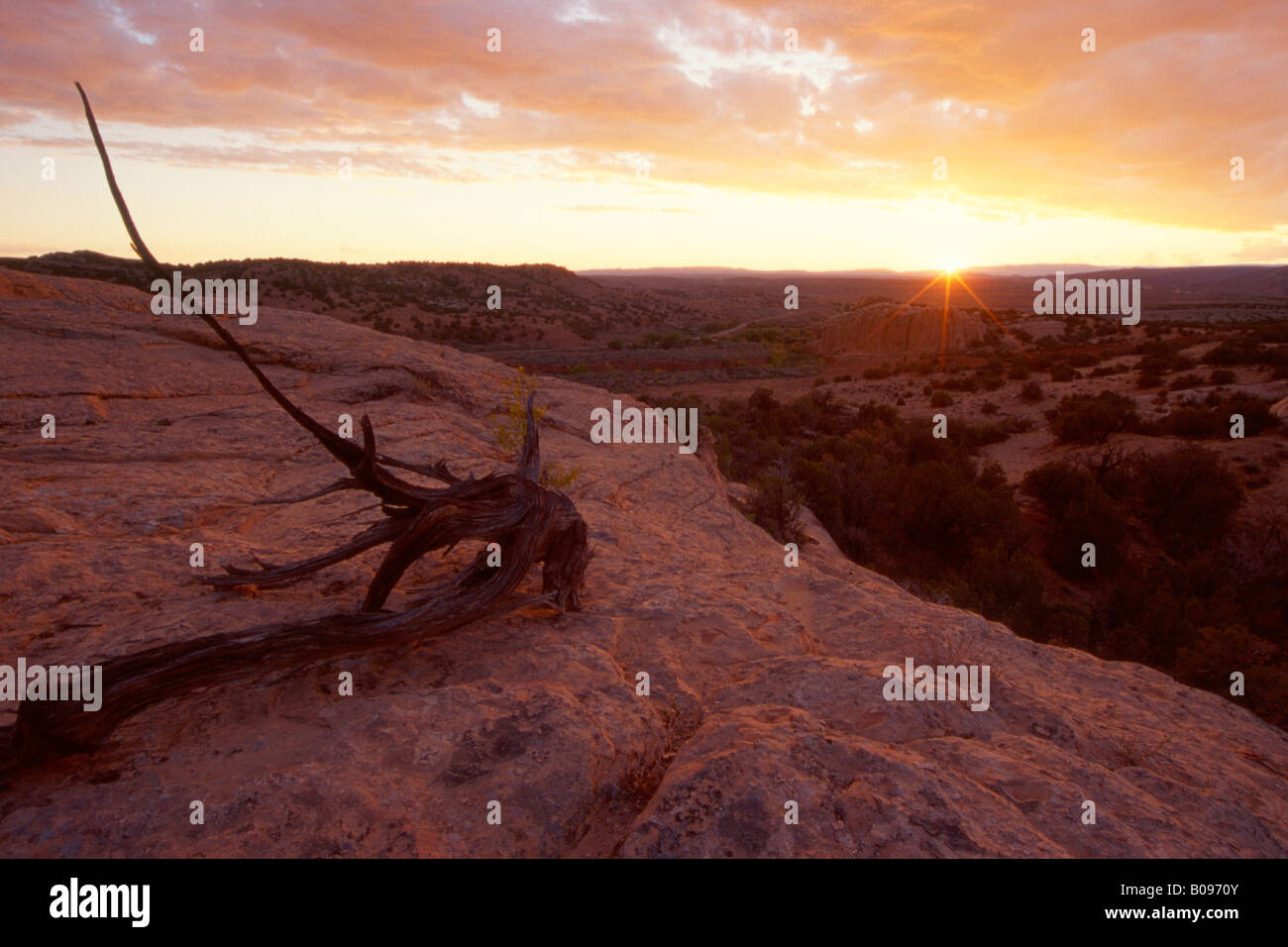 Low sun over Dinosaur National Monument, Utah, USA - Stock Image
