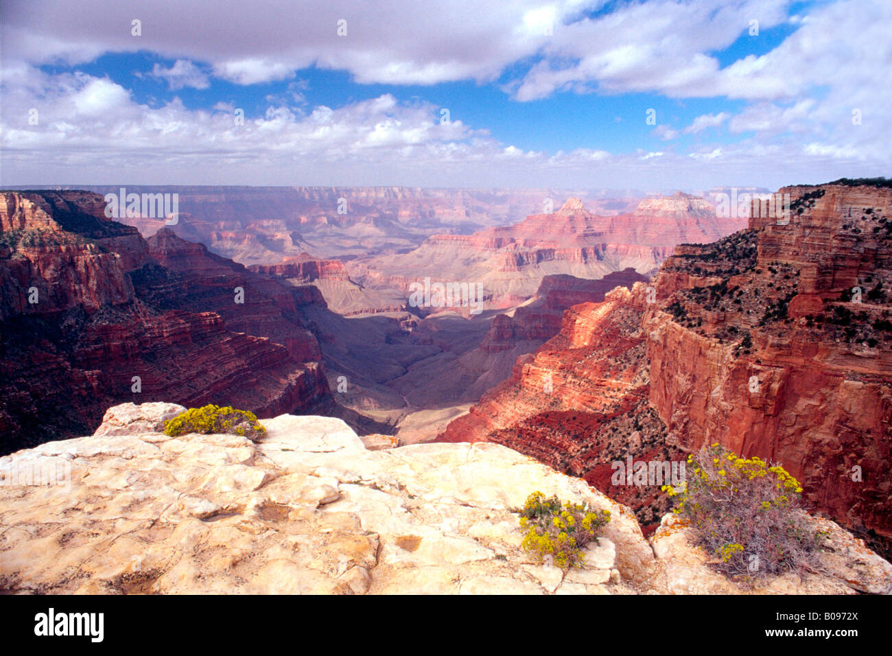 Cape Royal, North Rim of the Grand Canyon, Grand Canyon National Park, Arizona, USA, North America Stock Photo