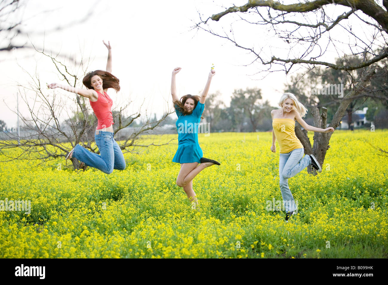 Three young women smiling and jumping in a yellow field of mustard plants. - Stock Image