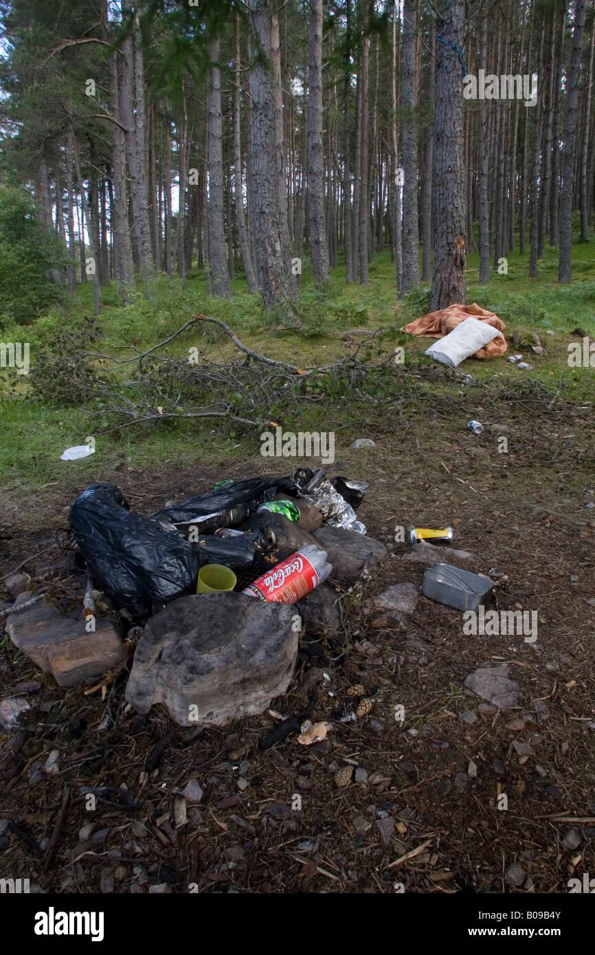 Vandalism in woodland reserve, Migdale, Scotland - Stock Image