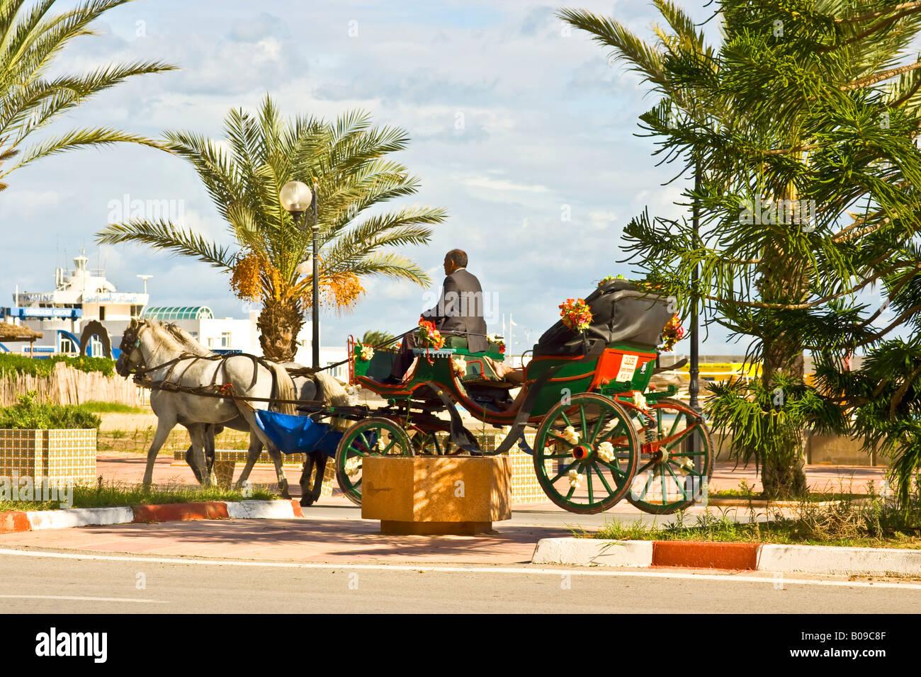 Yasmine Hammamet Tunesia Tunisia - Stock Image