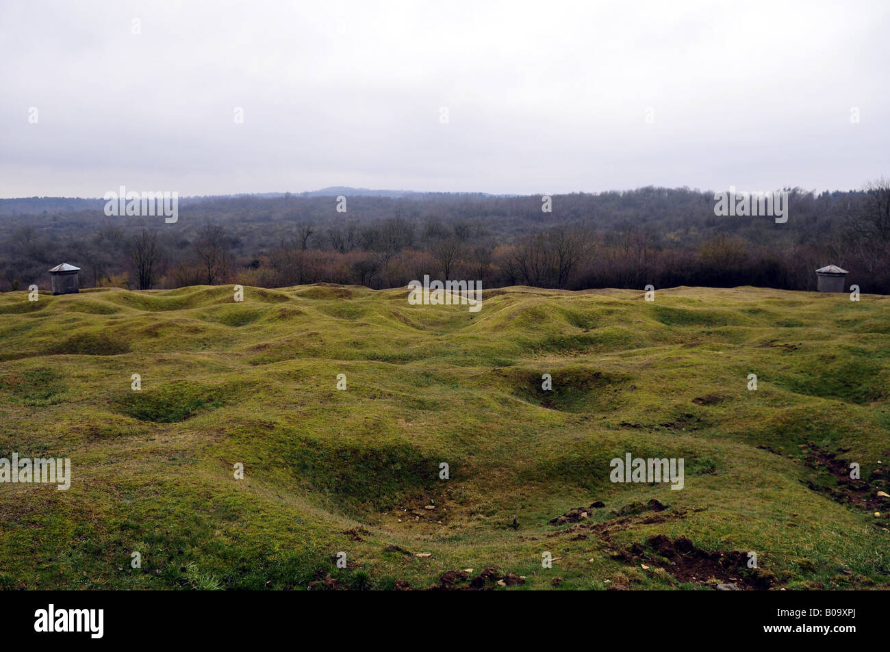 destroyed landscape near verdun stock photos destroyed landscape