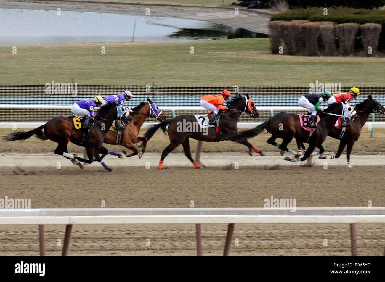 Horses racing at Aqueduct Race Track New York City - Stock Image