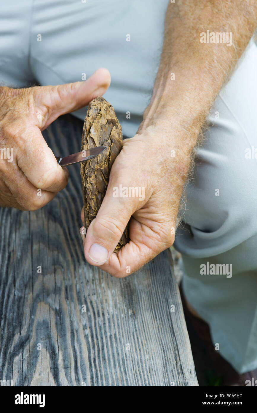Man whittling piece of bark, cropped view - Stock Image