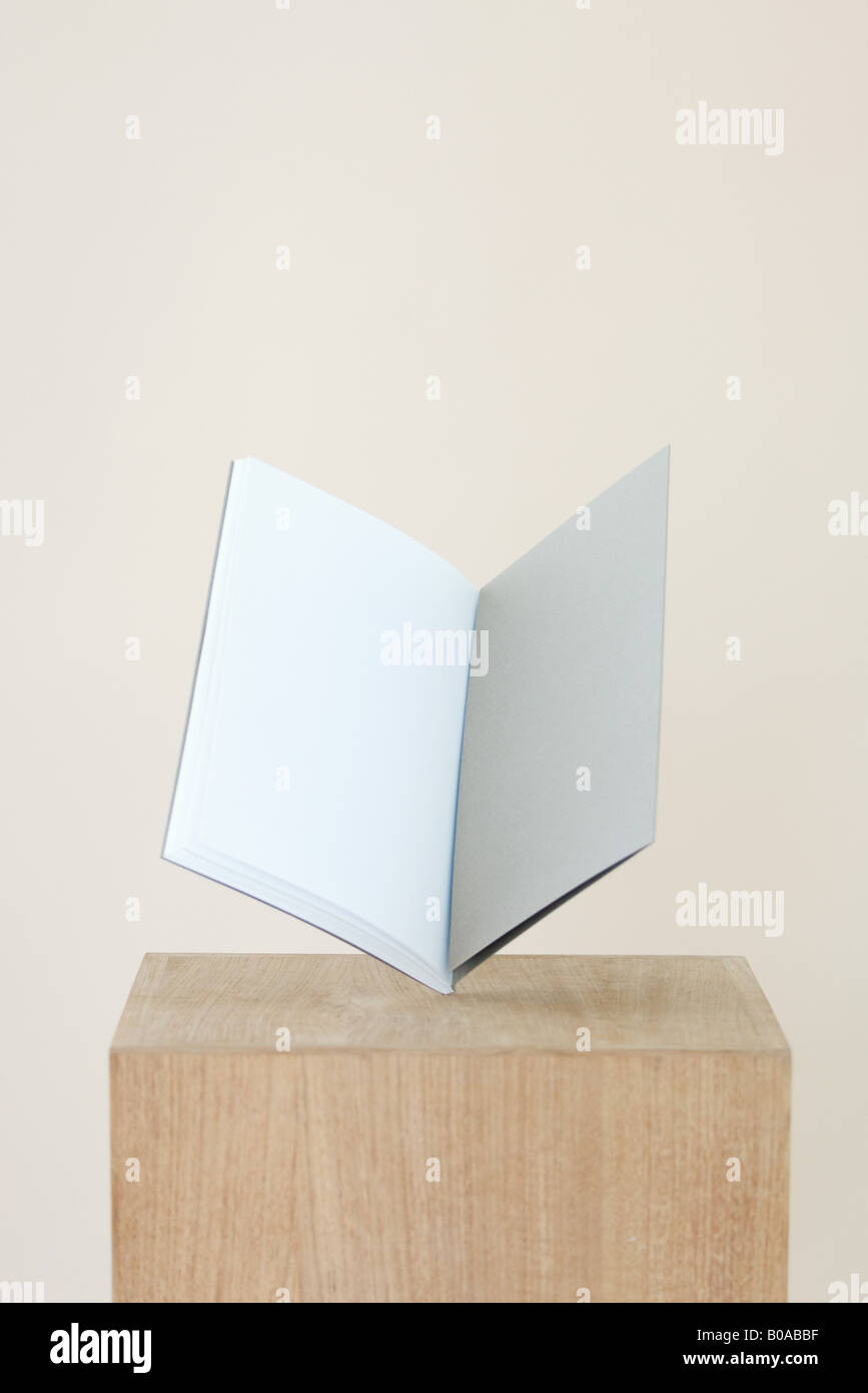 Open book on pedestal, blank pages inside - Stock Image
