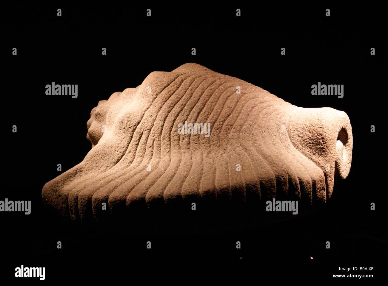 Aztec conch shell sculpture, Museo del Templo Mayor, Mexico City Stock Photo