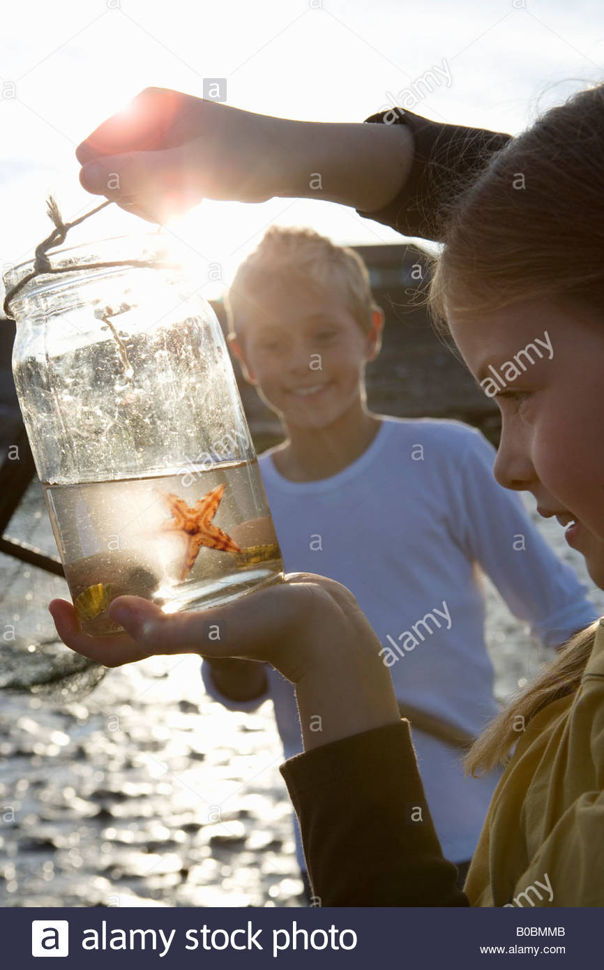Girl 7-9 years holding up jar containing starfish by boy - Stock Image