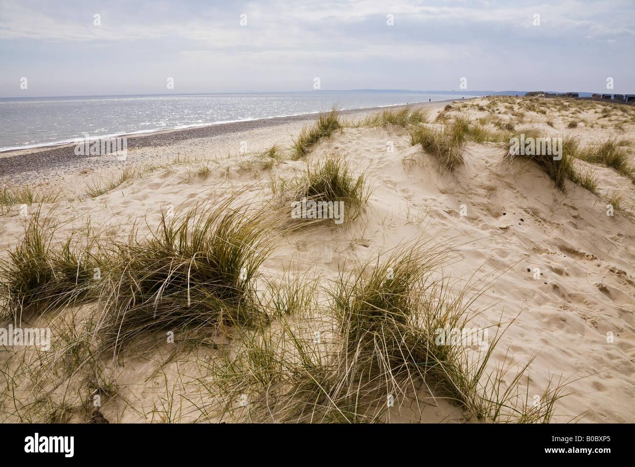 The beach and sand dunes, Walberswick, Suffolk, England - Stock Image