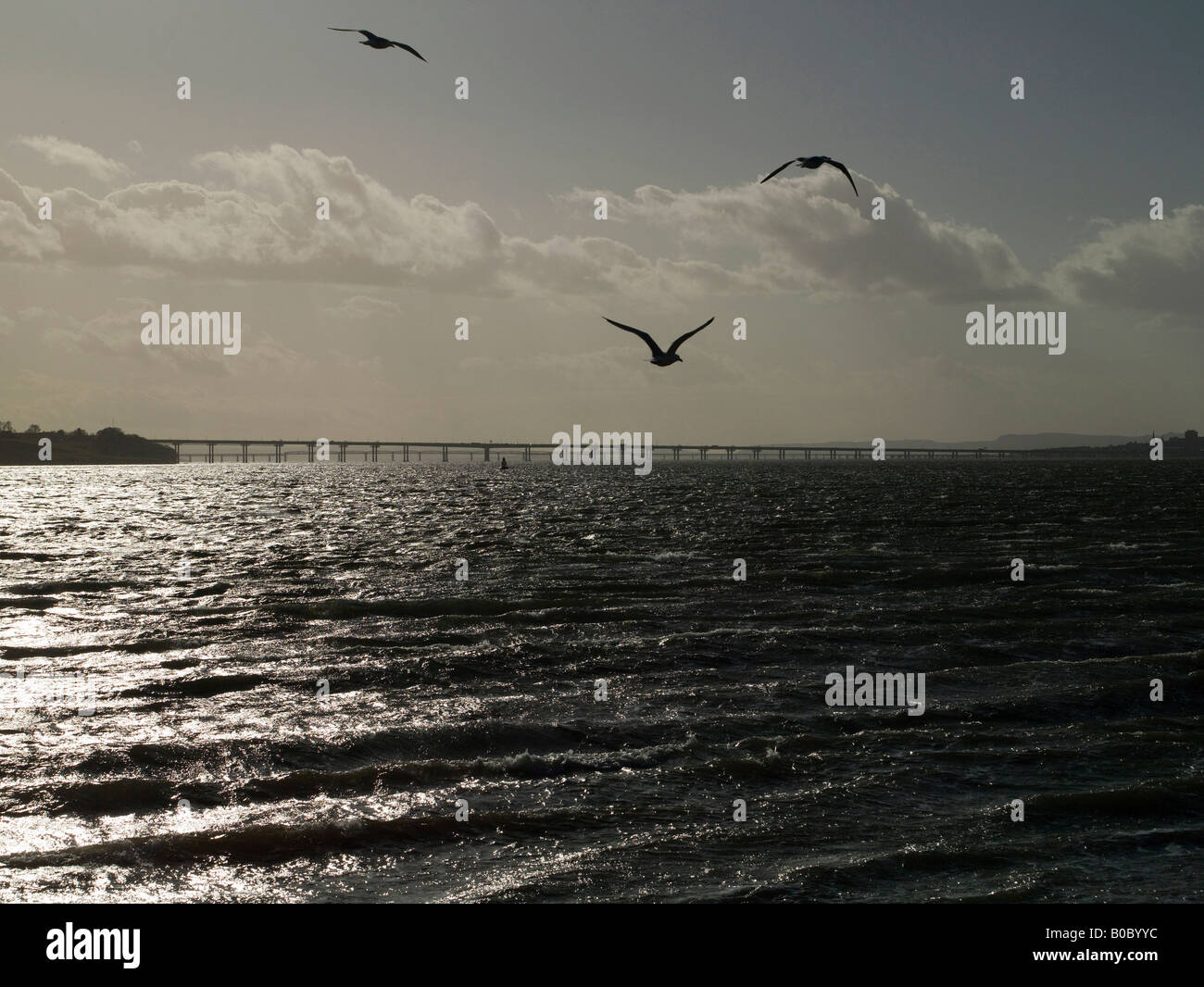 The Silvery Tay from Broughty Ferry, Dundee, Tayside, Scotland - Stock Image