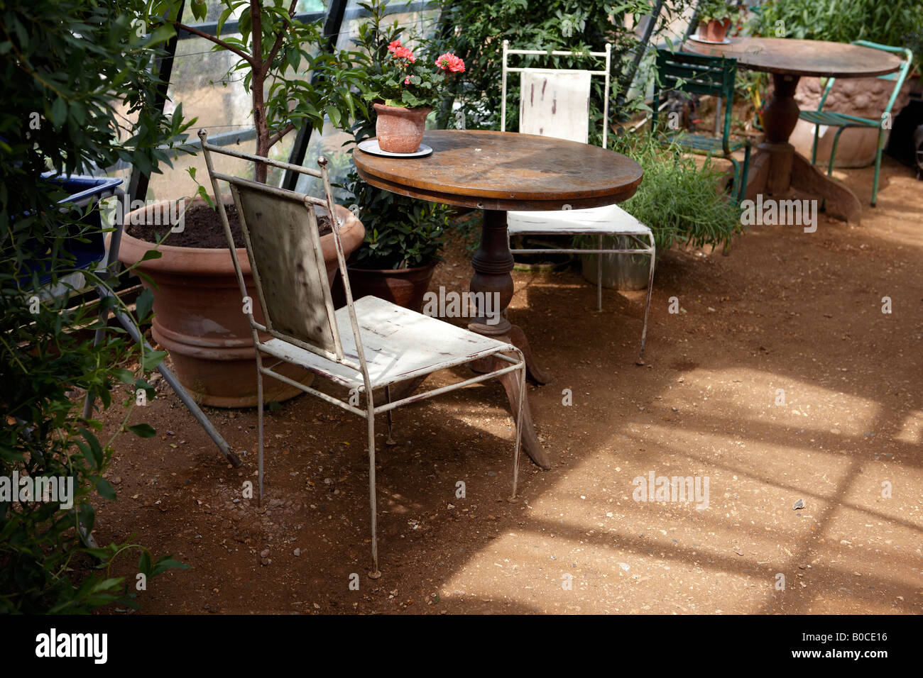Antique Garden Furniture, In A Greenhouse.   Stock Image
