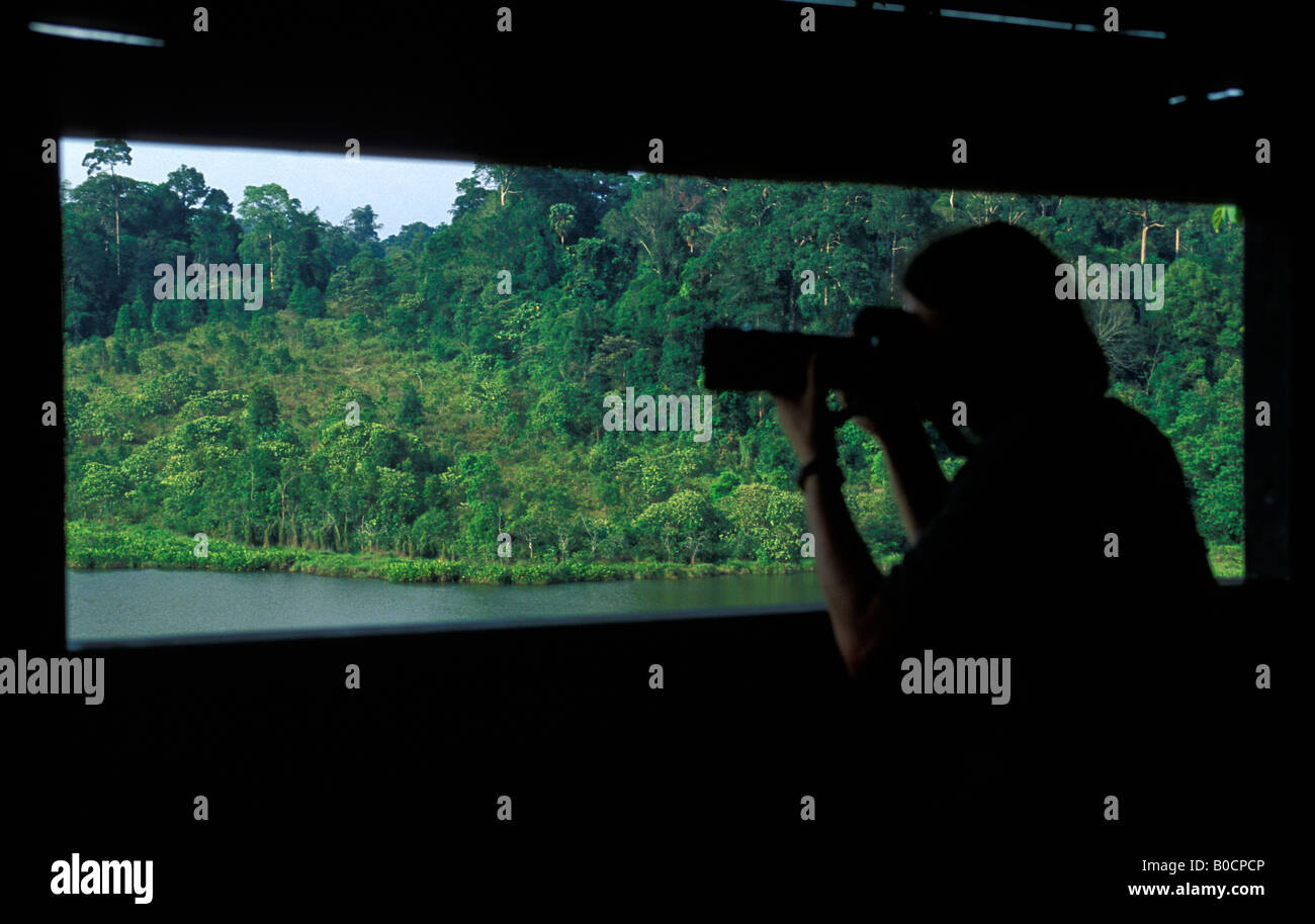 Tourist taking photos from a hide in the Khao Yai National Park - Stock Image