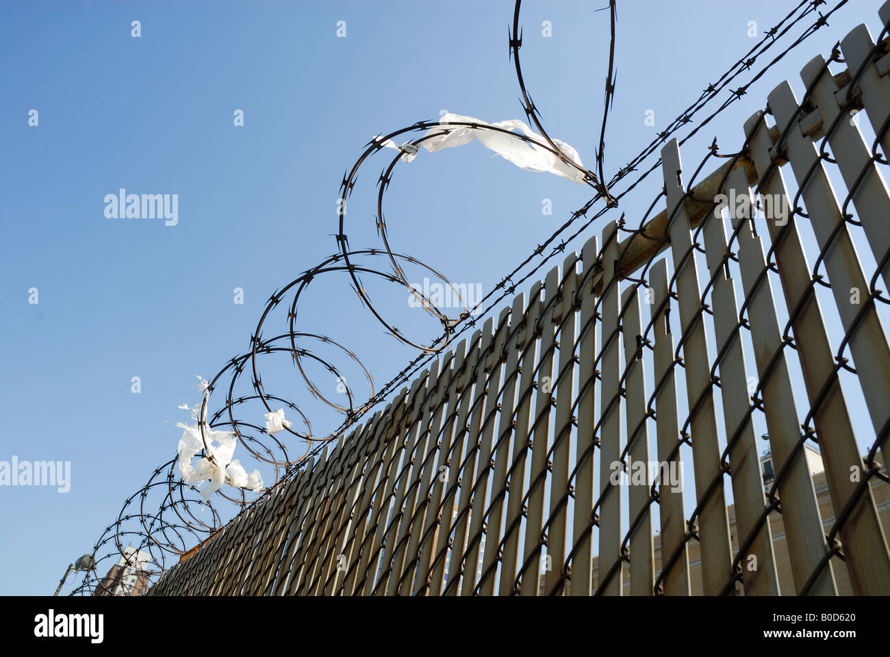 Fence with barbed wire against blue sky - Stock Image